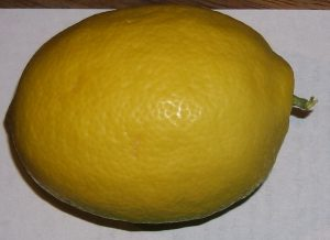 Meyer's Lemon