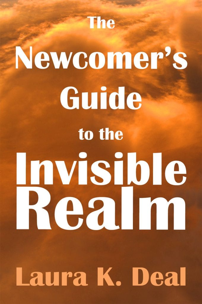 The Newcomer's Guide to the Invisible Realm by Laura K. Deal